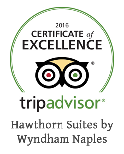 TripAdvisor - 2016 Certificate of Excellence - Hawthorn Suites by Wyndham Naples